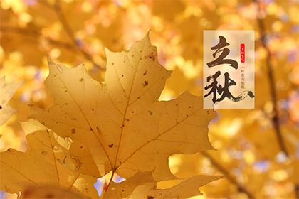 立秋的时间日子是农历还是公历?立秋下个节气是什么?