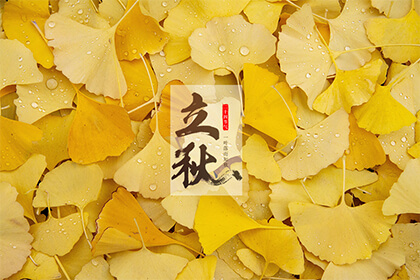 描写立秋的古诗有哪些?立秋节气之后为什么是处暑?