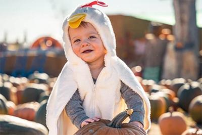 2021辛丑牛年农历九月初五日出生的男宝宝命如何?