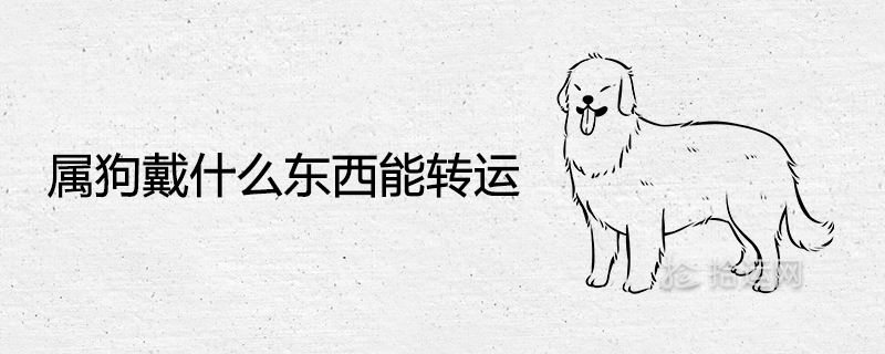 属狗戴什么东西能转运 旺财带来好运气的吉祥物