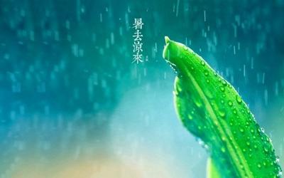 立秋下雨有什么说法?2021辛丑牛年立秋日子好吗?