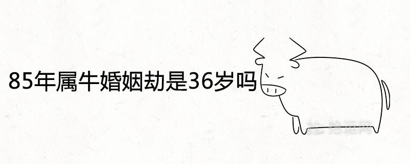 85年属牛婚姻劫是36岁吗 2021年的感情运势如何