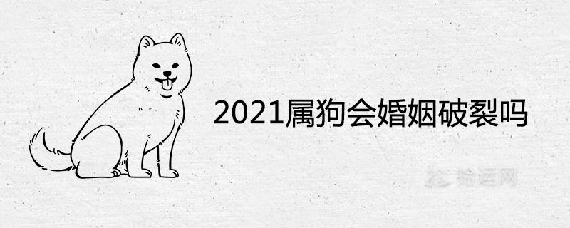 2021属狗会婚姻破裂吗 感情状况怎么样