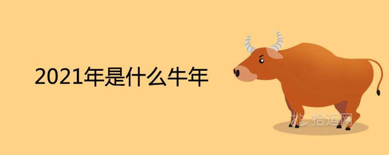 2021年是什么牛年金木水火土 五行属什么