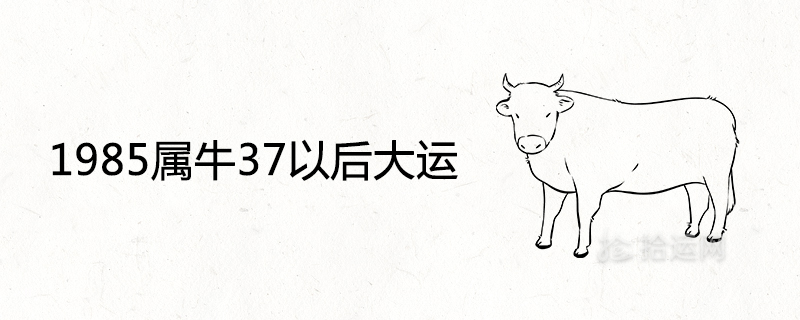 1985属牛37以后大运怎么样 转运年份是哪年