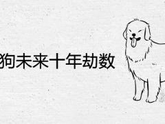 1970属狗未来十年劫数及运程