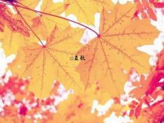 立秋时辰是几点几分是什么时间 2021年立秋时间是早还是晚